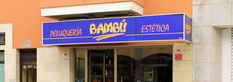 Bambú Realejos